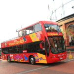 市内観光バスツアー「City Sightseeing Cape Town Hop on Hop off」