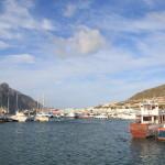小さな湾にオットセイのいるビーチと民芸品マーケットに溢れた港、ハウトベイ