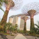 1未來的周年紀念日主題大型植物園由--灣。