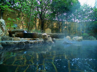 "Plan casual Japanese a day excursion ""hamanako Royal Hotel"" in Yu Yu"