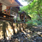 Antique Cafe road antiques dealer in Kakegawa、In the unexplored experience the healing stream and trees