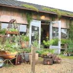 """車庫豐橋分支、禮物植物在濱松""""生活與植物鏽的欲望。"""