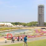 """""""濱名湖花,迫2014年 - 鮮花和綠色的節日 - """"在濱名湖花園公園最後一天!"""
