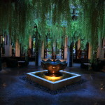 """The Siam"" Moody night and tranquility from moment to moment and greet world"
