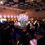「帝国ホテル」✕「シャーウッド台北」各国で活躍するメディアが集結!桜咲く懇親会