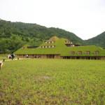 「ラ・コリーナ 近江八幡」たねやグループが新しく複合施設をオープン!