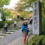 """在令人尊敬的正確寺廟坐落在京都""""京都大原學校的 3000 的群山中提供"""