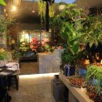 ' 牛奶花 ' 的感覺!! 特色獨特的季節性花卉和綠色花店