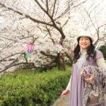 「さくらまつり」浜松城公園にて340本の桜を愛でる桜まつりで花見弁当