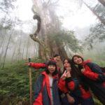 「棲蘭神木園」まるで屋久島!もののけ姫の世界のような台湾北部の聖地へ!