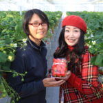 Open the strawberry-Suzuki farm! Stuff oneself with bright red strawberries strawberry picking!